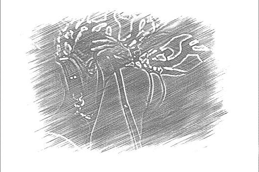 20121202-233026.jpg
